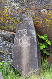 Native Indian Thunderbird Petroglyph