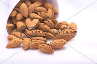 Almonds in shell paper bags