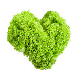 Fresh lettuce leaves in heart shape isolated