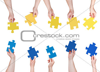 blue and yellow puzzle pieces in people hands