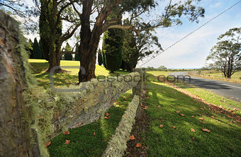 Beautiful lichen covered fence in the Southern Highlands