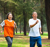 happy senior couple jogging together in the park