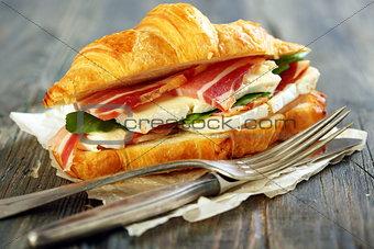 Appetizing sandwich closeup.