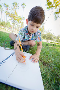 Cute Young Boy Drawing Outdoors on the Grass