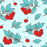 Seamless pattern with red rowanberry
