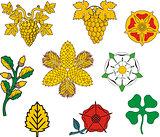 Heraldic floral elements