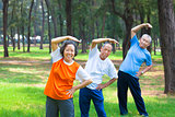 all seniors  doing gymnastics in the park