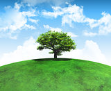 3D render of a tree on a curved grassy landscape