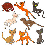 Eight colorful funny cats on a white background