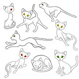Eight contours of funny cats