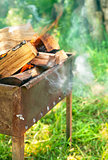 Burning firewood in brazier on green  lawn