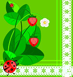 lace, strawberry and ladybug