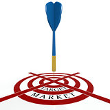 Dart board with target market
