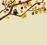 Owl on an autumn branch