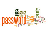 Password word cloud