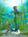 Mermaid Realms
