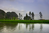 Travelling along rice fields on Tam Coc stream, Ninnh Binh, Viet