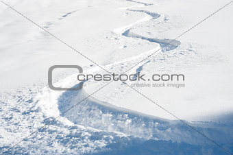Ski track in fresh snow