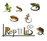 Reptiles icons