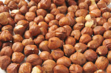 Hazelnut background