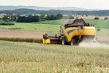 combine harvesting rape