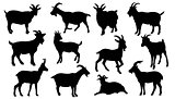 goat silhouettes