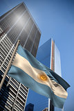 Argentina national flag