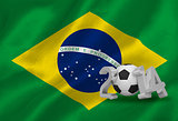 World cup 2014 with brasil flag