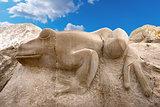 Stone Frog - Caorle -  Venezia Italy