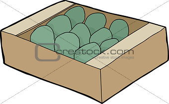 Avocados in Crate