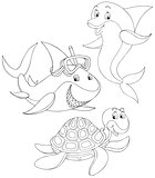 Shark, turtle and dolphin