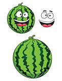 Cartoon ripe watermelon fruit