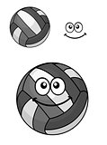 Two volleyball balls
