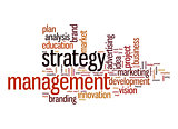 Strategy management word cloud