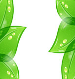 Abstract eco green background