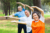 seniors  doing gymnastics in the park