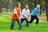 Seniors are warming up before jogging in the park