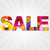 Color Gerbers Sale Banner