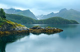 Lake (fjord) and Svartisen Glacier (Norway)