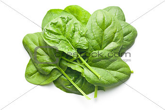 green spinach leaves