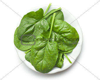 green spinach leaves on plate