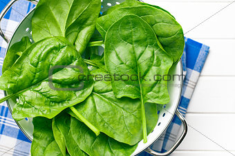green spinach leaves in colander
