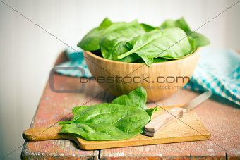 green spinach leaves on old table