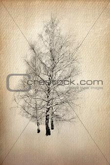 Tree on Grunge Paper
