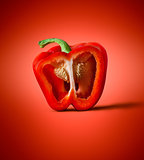 Red pepper on a background