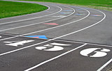 starting line on sports track