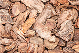 Background of pine bark nuggets layer used for gardening