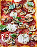 Rustic Pizza with Salami,Tomato, Onion and Mushrooms