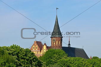 Koenigsberg Cathedral on the Kneiphof island. Kaliningrad, Russia