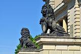 Koenigsberg lions